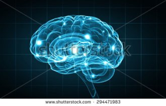 stock-photo-concept-of-human-intelligence-with-human-brain-on-blue-background-294471983